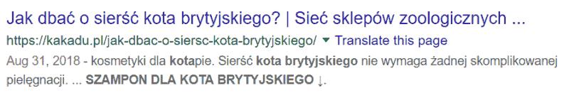 opis meta google